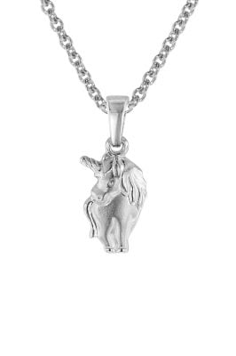 trendor 08466 Einhorn-Anhänger mit Halskette für Mädchen 925 Silber